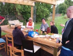 Peacemeal-community-gardening-willington-court