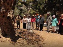 Garden Gethsemane WorkTrek Peacemeal